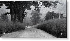 Winding Rural Road Acrylic Print by Andrew Soundarajan