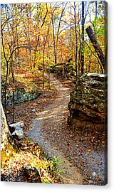 Winding Trail Acrylic Print by Marty Koch