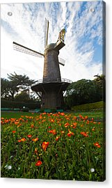 Windmill And Poppies Acrylic Print