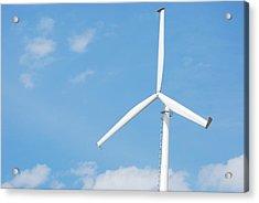 Windmill Acrylic Print by Kim French
