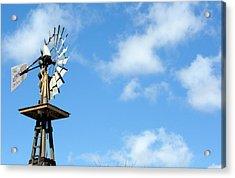Windmill Acrylic Print by Terry Thomas