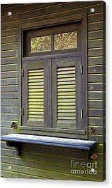Window And Moss Acrylic Print by Carlos Caetano