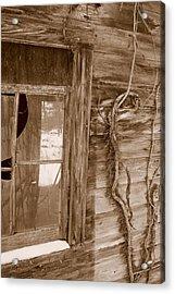 Window And Vine Acrylic Print