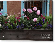 Acrylic Print featuring the photograph Window-box Flowers  by Sherry Davis