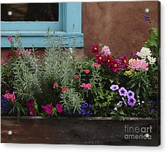 Acrylic Print featuring the photograph Window-box II by Sherry Davis
