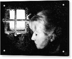 Window To The World Acrylic Print by Gun Legler