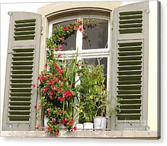 Window With Flower Pots Acrylic Print
