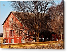 Windows And Doors Acrylic Print by Edward Peterson