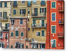 Windows Of Camogli Acrylic Print by Joana Kruse