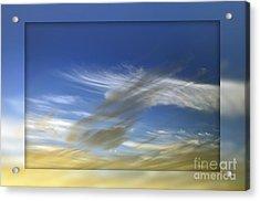 Windswept 2 Acrylic Print by Kaye Menner