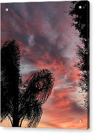 Windswept Clouds Acrylic Print