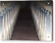 Wine Barrels In Line Acrylic Print
