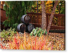 Wine Barrels Acrylic Print by Kevin Schrader