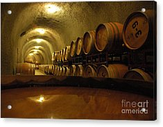 Wine Cellar Acrylic Print by Micah May