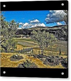 #winery #temecula #photographer #image Acrylic Print