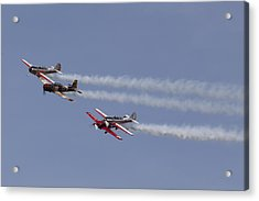 Wing To Wing Acrylic Print by Sara Hudock