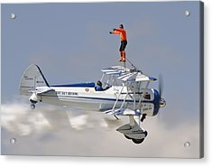 Wing Walker Acrylic Print by Eric Miller