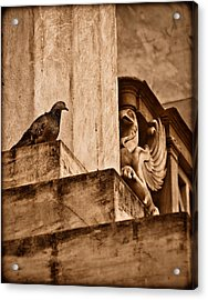 Athens, Greece - Winged Encounter Acrylic Print