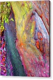 Acrylic Print featuring the digital art Winning Ticket by Richard Laeton