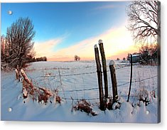 Winter 1 Acrylic Print