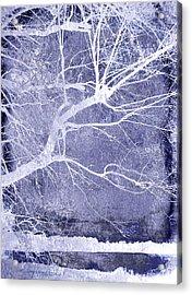 Winter Blues Acrylic Print by Ann Powell