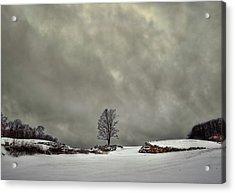 Winter Blues Acrylic Print by Evelina Kremsdorf