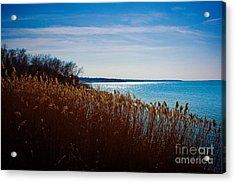 Winter Breeze Acrylic Print by Lisa Holmgreen