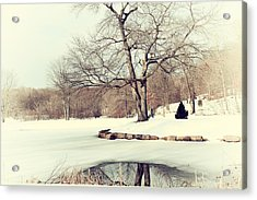 Winter Day In The Park Acrylic Print by Karol Livote