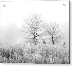 Winter Day Acrylic Print by Julie Palencia