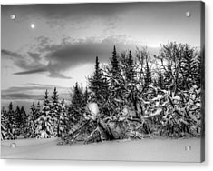 Acrylic Print featuring the photograph Winter Evening by Michele Cornelius