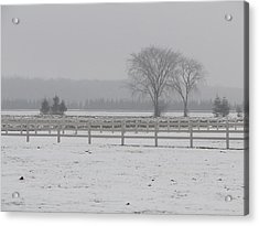 Acrylic Print featuring the mixed media Winter Fog On The Paddocks by Bruce Ritchie