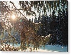 Winter Acrylic Print by Franz Roth