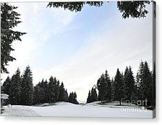 Winter Golf Course  4 Acrylic Print by Tanya  Searcy
