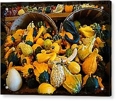 Winter Gourds  Acrylic Print by Nick Kloepping