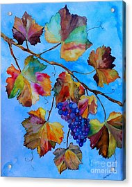 Winter Grapes Acrylic Print by Fred Meehan