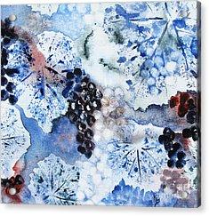 Winter Grapes IIi Acrylic Print by Karen Fleschler