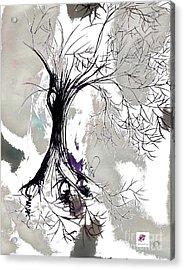 Winter Greenlake Tree Acrylic Print