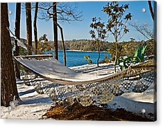 Acrylic Print featuring the photograph Winter Hammock by Susan Leggett