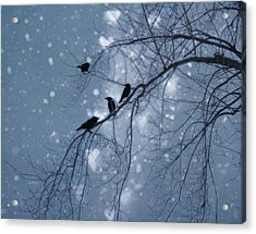 Winter Hearts Acrylic Print by Gothicrow Images