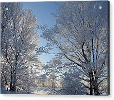 Winter Ice Acrylic Print