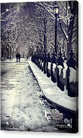 Winter In The Central Park New York 2 Acrylic Print