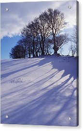 Winter Landscape Acrylic Print by The Irish Image Collection