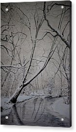 Acrylic Print featuring the drawing Winter Light by Lynn Hughes