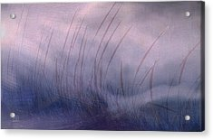 Winter Long Grass Acrylic Print by Jean Moore