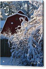 Winter Look Acrylic Print by Greg Patzer