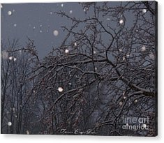 Winter Night Acrylic Print by Sacred  Muse