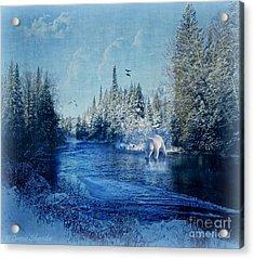 Winter Paradise Acrylic Print by Lianne Schneider