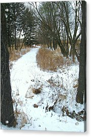 Winter Path Acrylic Print by Todd Sherlock