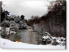 Winter Pond Acrylic Print