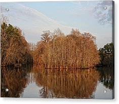Winter Reflections Acrylic Print by Sandra Anderson
